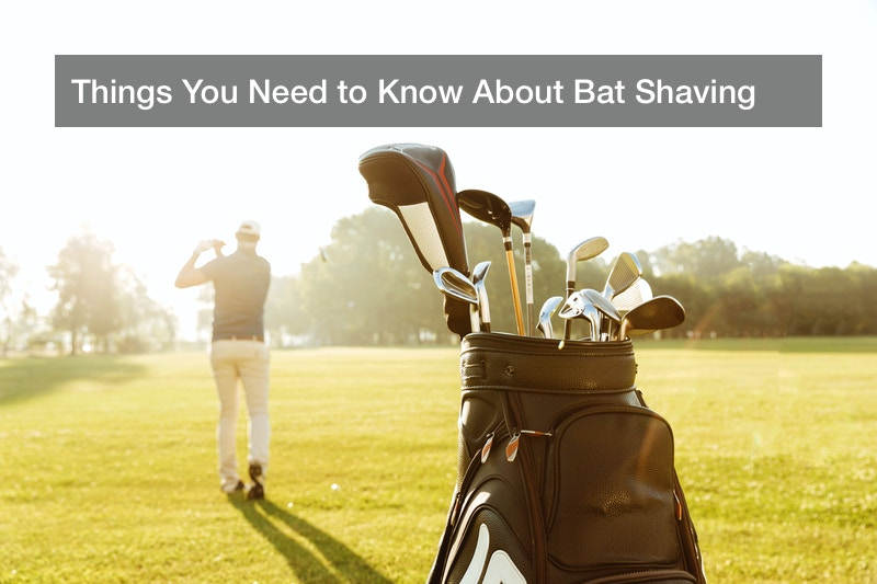 Things You Need to Know About Bat Shaving